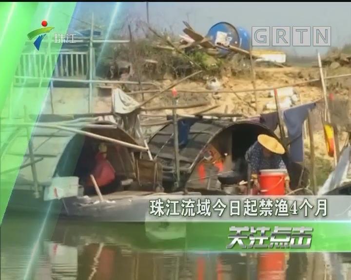 珠江流域今日起禁渔4个月