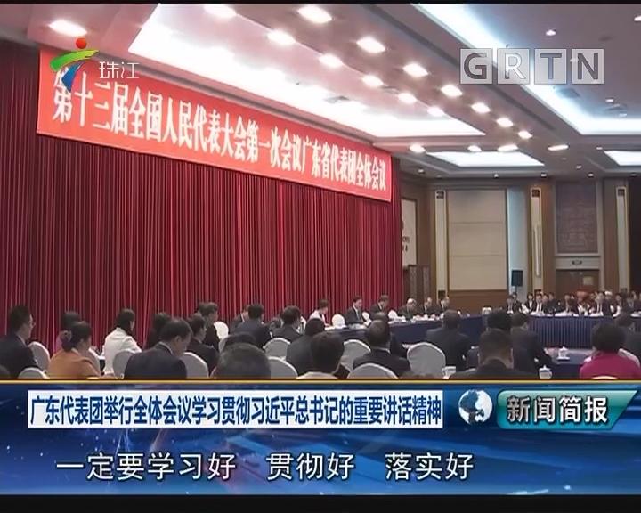 广东代表团举行全体会议学习贯彻习近平总书记的重要讲话精神