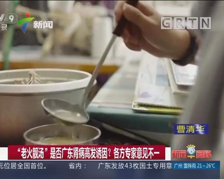 """""""老火靓汤""""是否广东肾病高发诱因? 各方专家意见不一"""