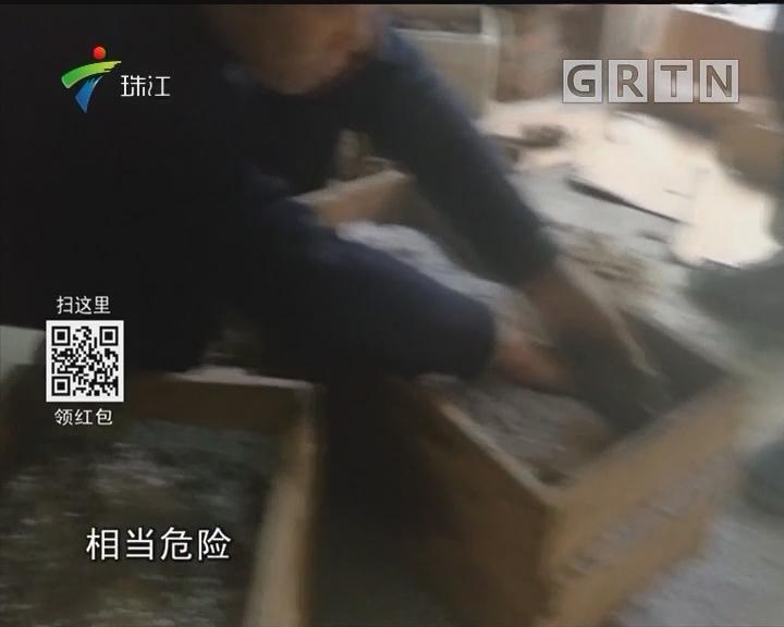 江苏居民装修 挖出抗战时期军火库