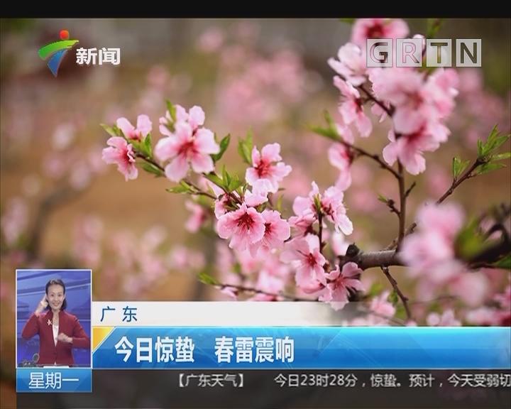 广东:今日惊蛰 春雷震响