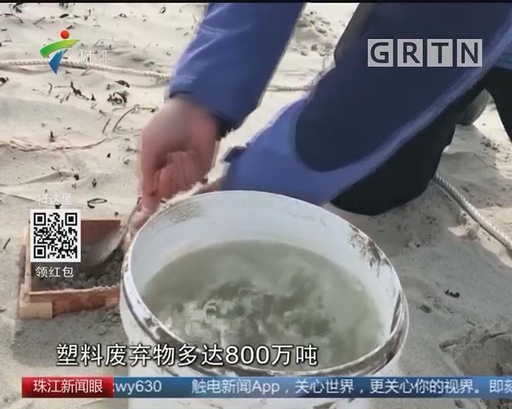 英展开全球最大规模塑料微粒海滩调查