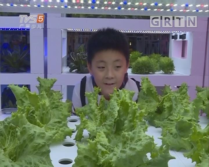 [2018-03-26]南方小记者:南方小记者带你揭秘商场里的蔬菜工厂