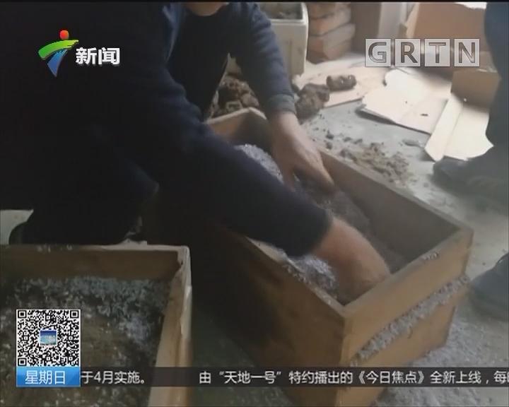 江苏镇江:居民后院建厕所 挖出过去日军炮弹