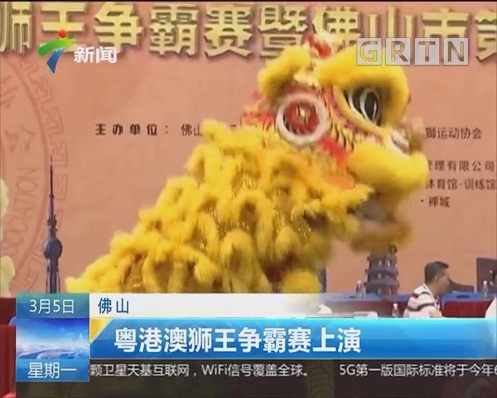 佛山:粤港澳狮王争霸赛上演