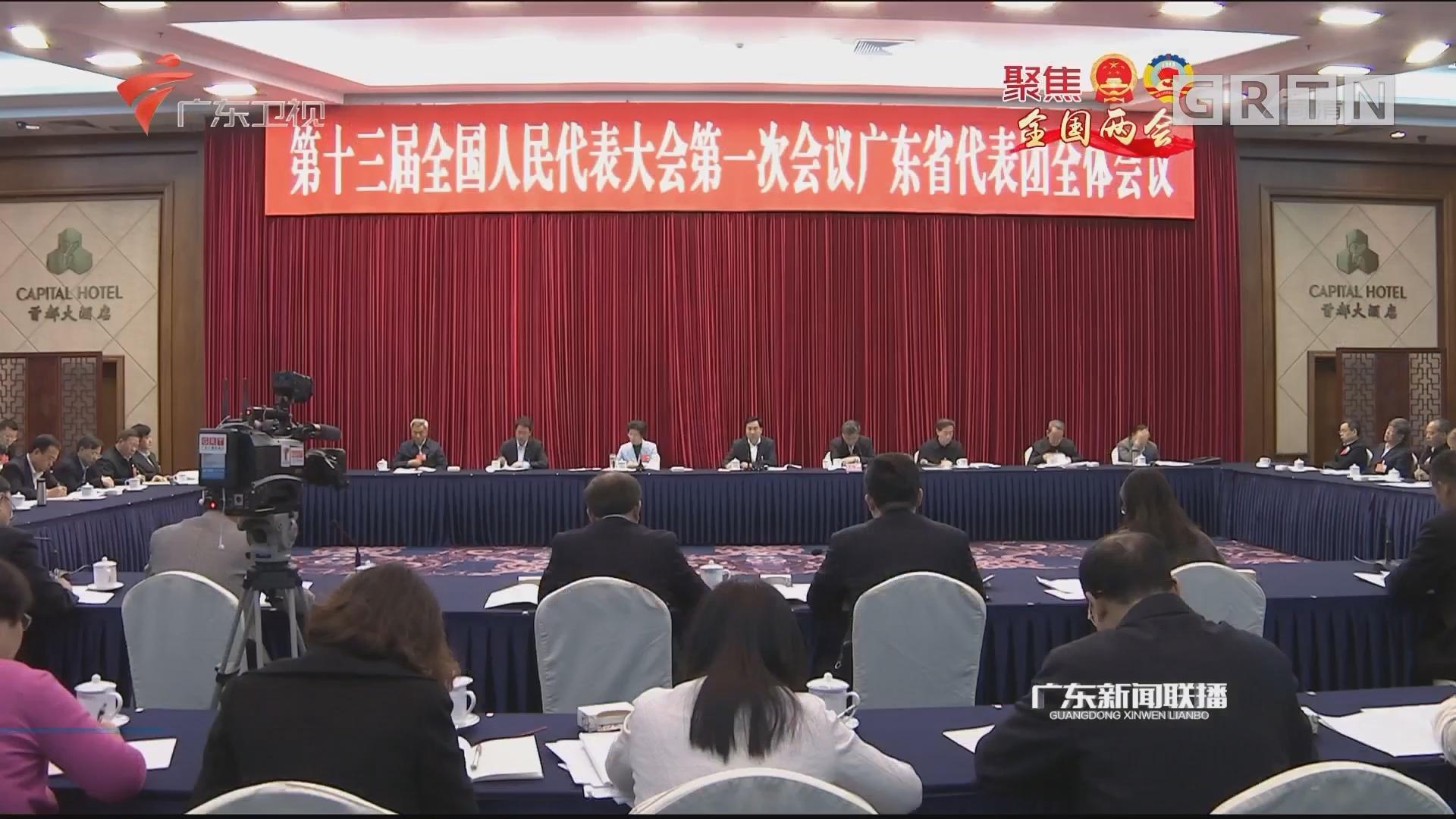 广东代表团审议全国人大常委会工作报告 李希马兴瑞李玉妹等发言