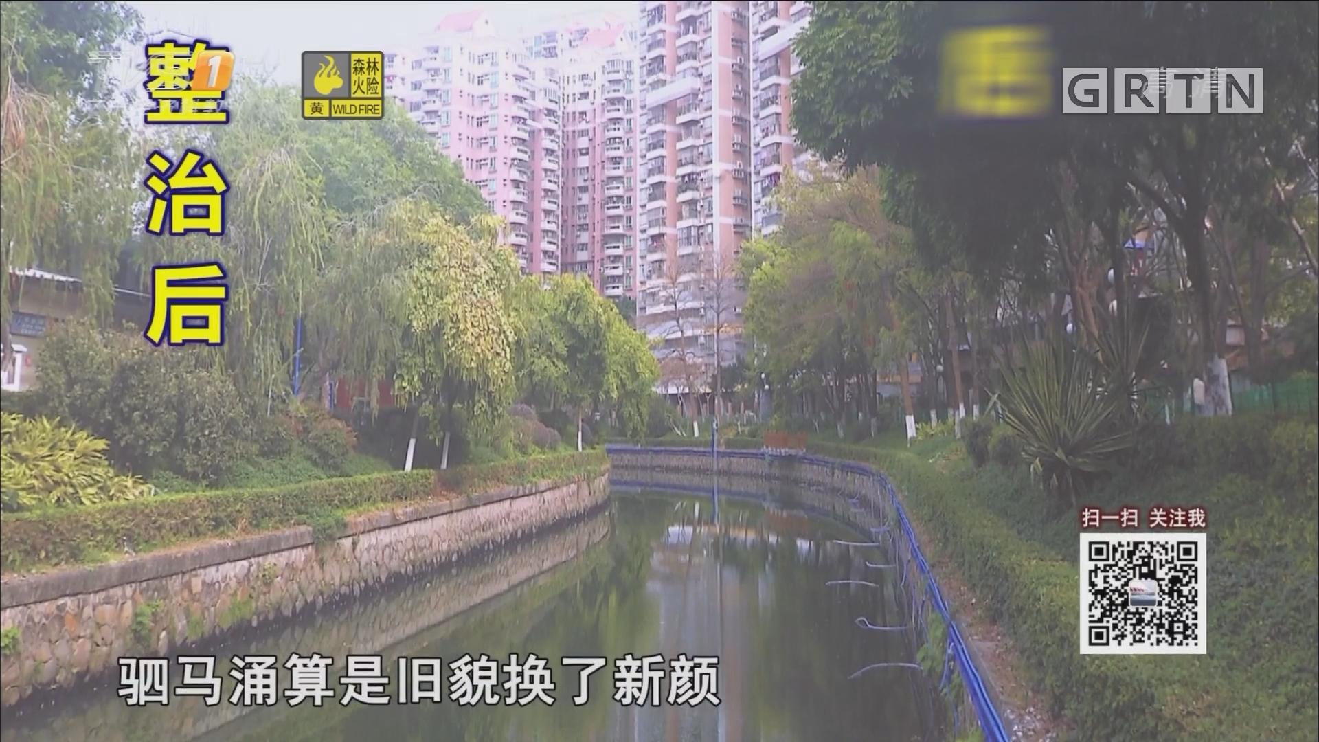 """广州驷马涌:从昔日""""墨水河""""重返""""河畅水清"""""""