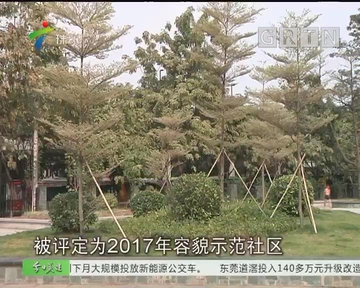 广州:30个容貌示范社区出炉