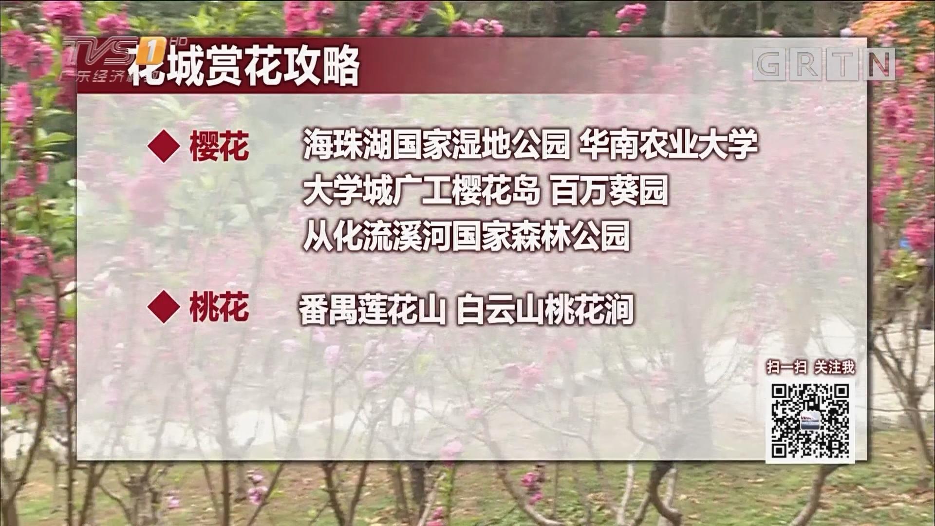 广州三月赏花季到来 这份赏花攻略请收好