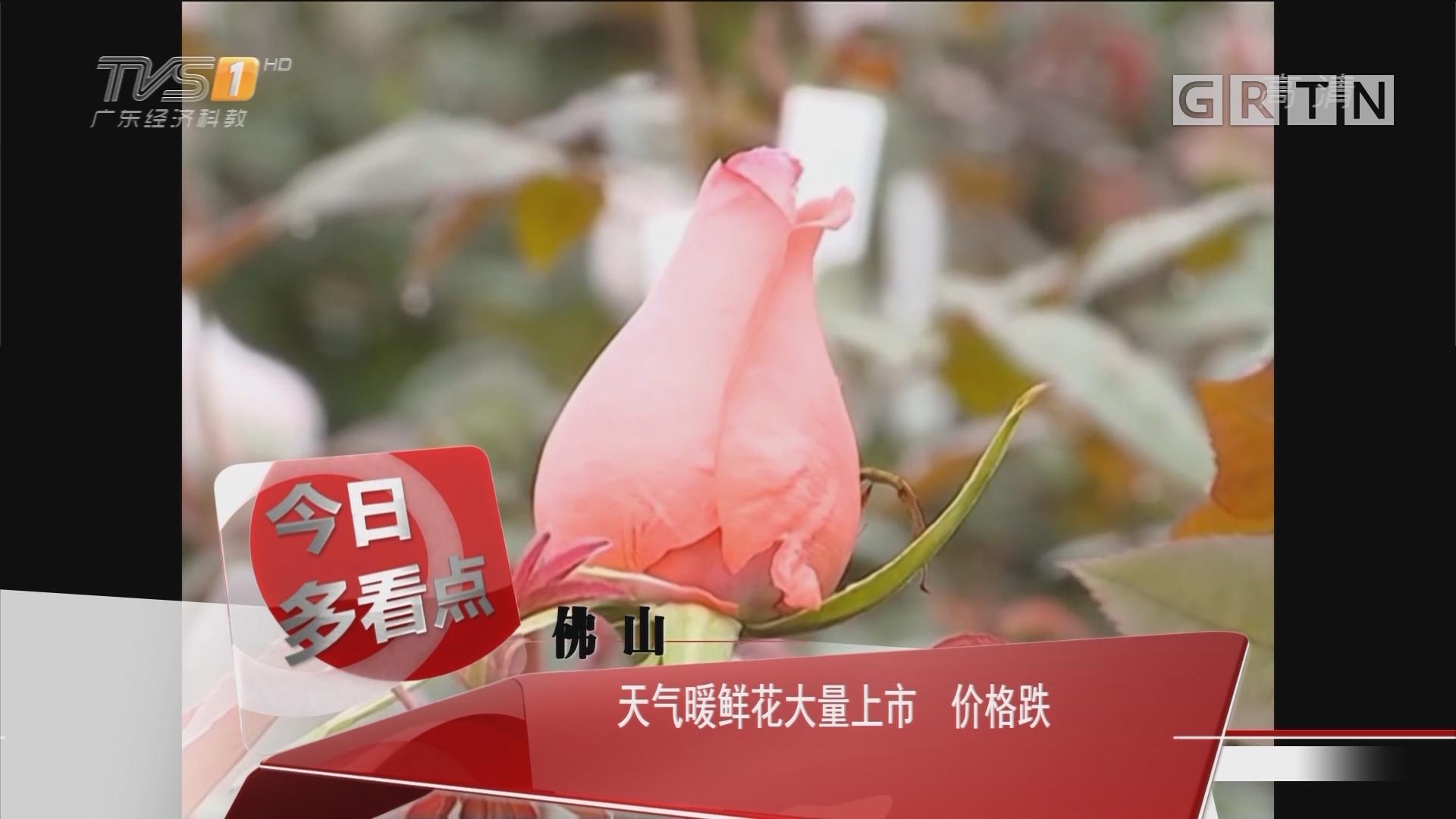 佛山:天气暖鲜花大量上市 价格跌