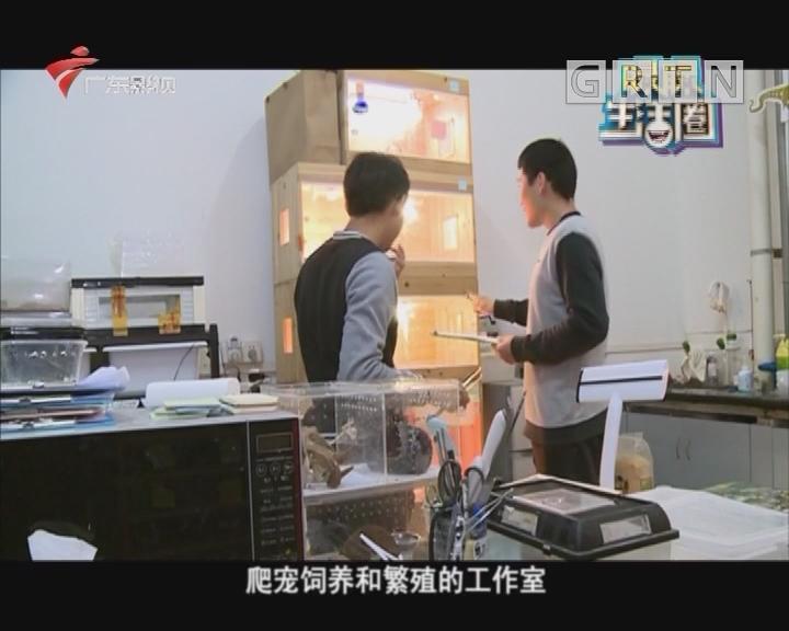 华农大学生创立爬宠工作室
