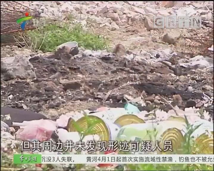 番禺:焚烧垃圾气味扰民 街道跟进处理