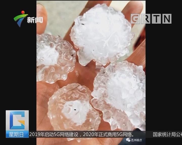 清远连州:连州今晨下冰雹 大如鸡蛋