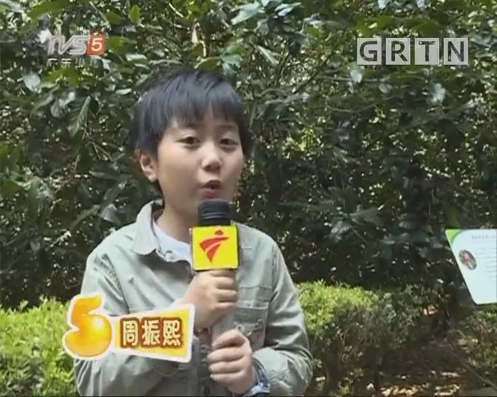 [2018-03-13]南方小记者:春天在哪里————植物园篇