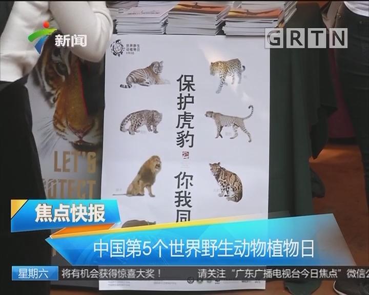 中国第5个世界野生动物植物日