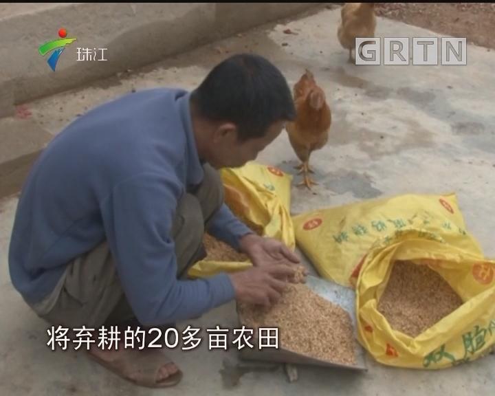 梅州兴宁:因人施策带领群众脱贫奔康