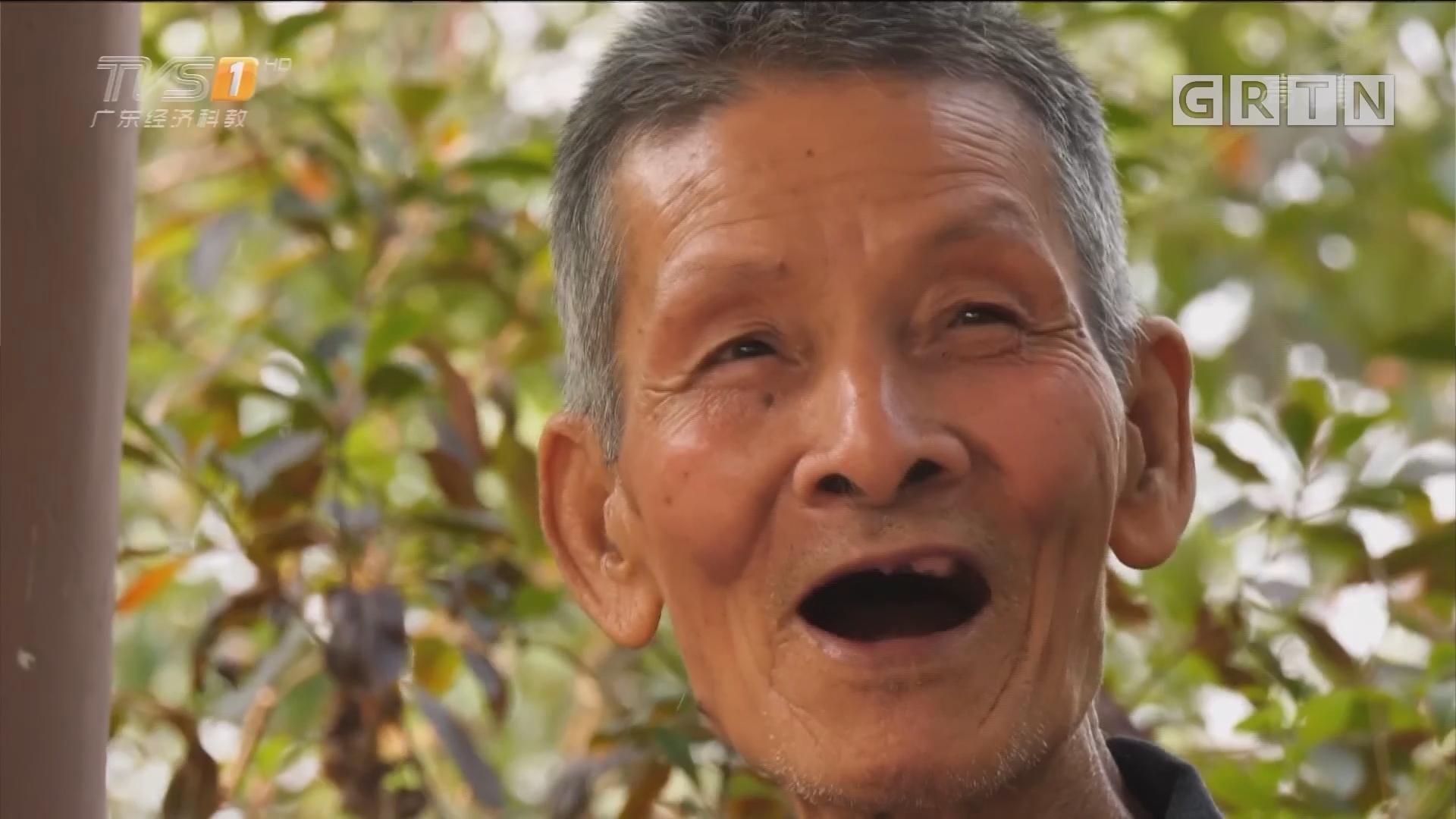 广州番禺:八旬老人义务巡山护林二十载