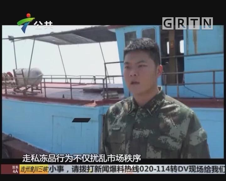 广东海警查获大量涉嫌走私冻品