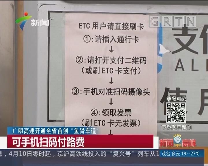 """广明高速开通全省首创""""鱼骨车道"""":可手机扫码付路费"""