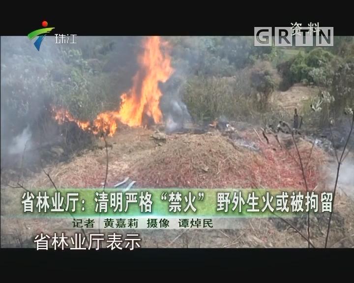 """省林业厅:清明严格""""禁火""""野外生火或被拘留"""