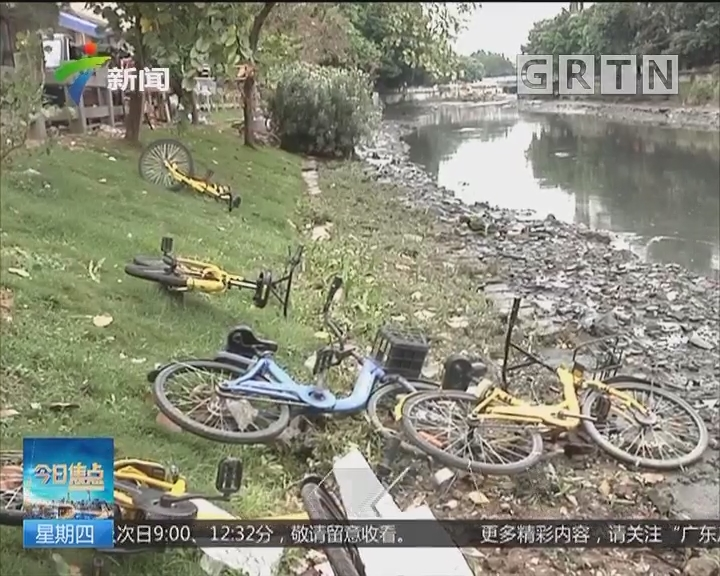 广州海珠:几十辆共享单车 被扔河里