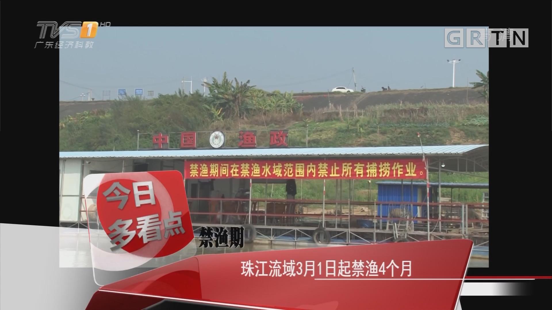 禁渔期:珠江流域3月1日起禁渔4个月