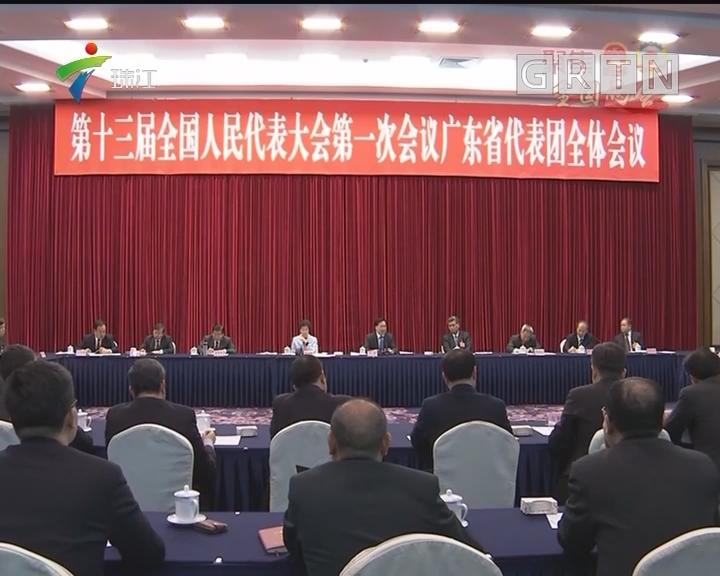 广东代表团举行全体会议 学习贯彻习近平总书记的重要讲话精神