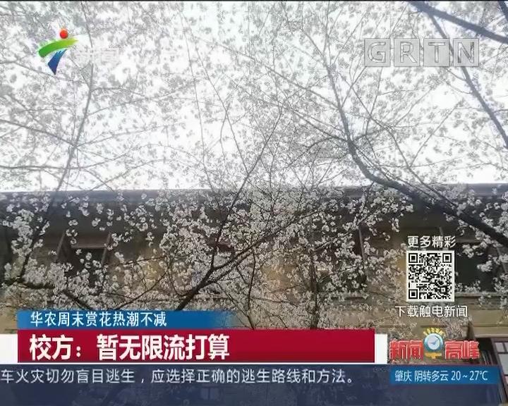 华农周末赏花热潮不减 校方:暂无限流打算