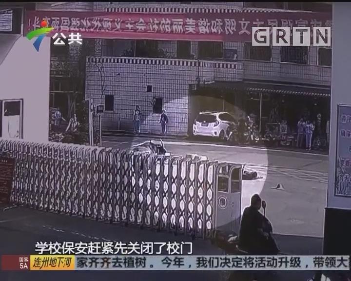 梅州:水牛跑上街头 保安快速关门护住学生