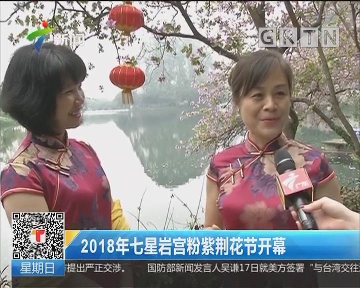 2018年七星岩宫粉紫荆花节开幕
