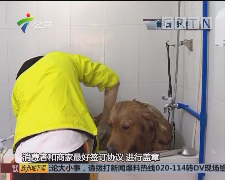 街坊报料:小狗受伤做手术 宠物医院坐地起价?