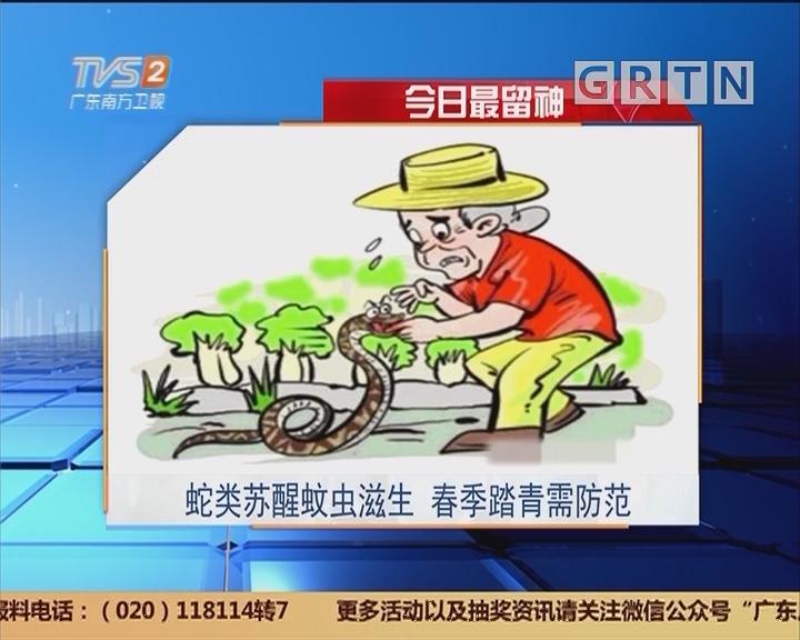 今日最留神:蛇类苏醒蚊虫滋生 春季踏青需防范