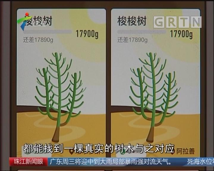 互联网+植树 倡导低碳生活