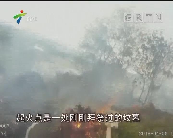 佛山:男子扫墓引火烧山 行政拘留12日