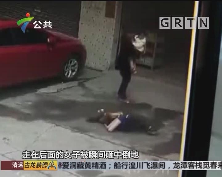广州:流浪狗从天而降 过路女子被砸伤
