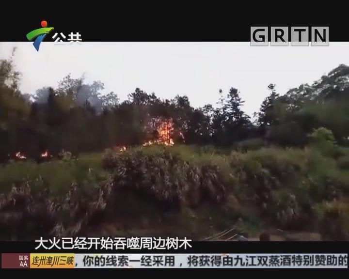 梅州:不慎引发山火 老人被刑事拘留