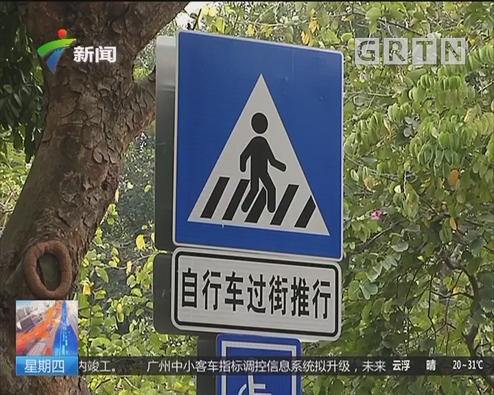 广州重建慢行系统:主城区三成道路无自行车道