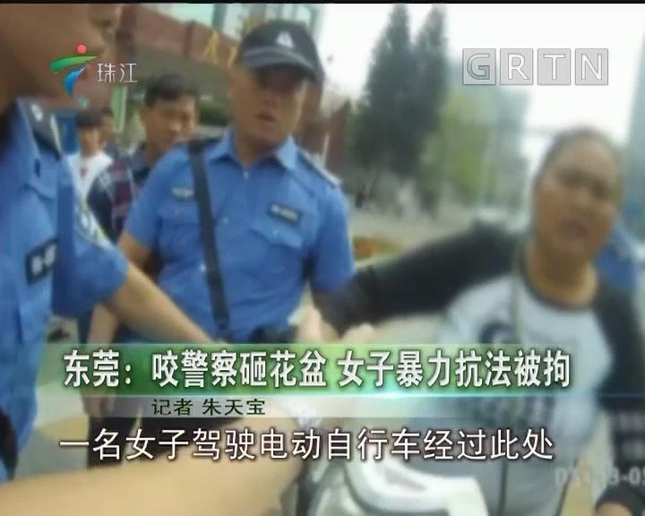 东莞:咬警察砸花盆 女子暴力抗法被拘