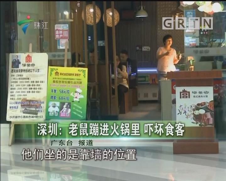 深圳:老鼠蹦进火锅里 吓坏食客