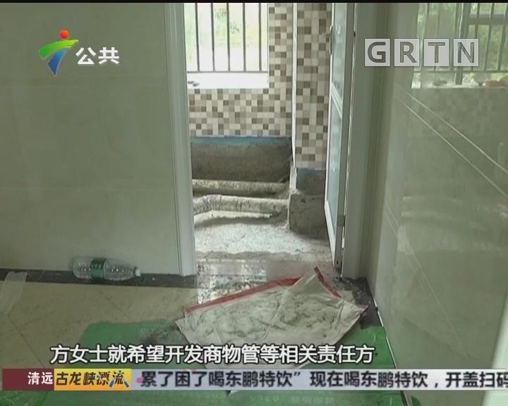 """东莞:新屋没入住 竟现遍地""""黄金"""""""