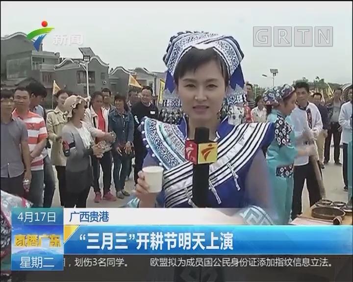 """广西贵港:""""三月三""""开耕节明天上演"""