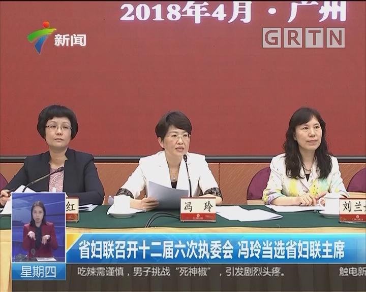 省妇联召开十二届六次执委会 冯玲当选省妇联主席
