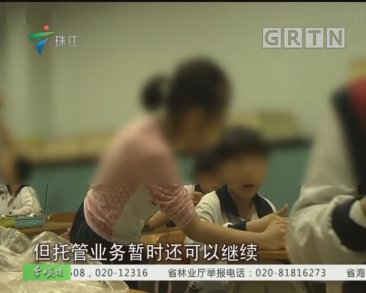 """广州:""""有照无证""""多家培训班已停课"""