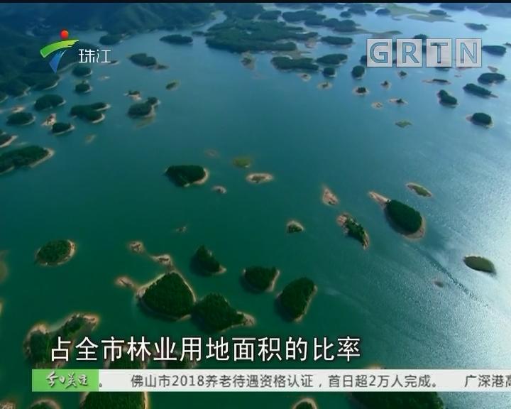江门:建100万亩生态公益林 街坊出门200米见绿