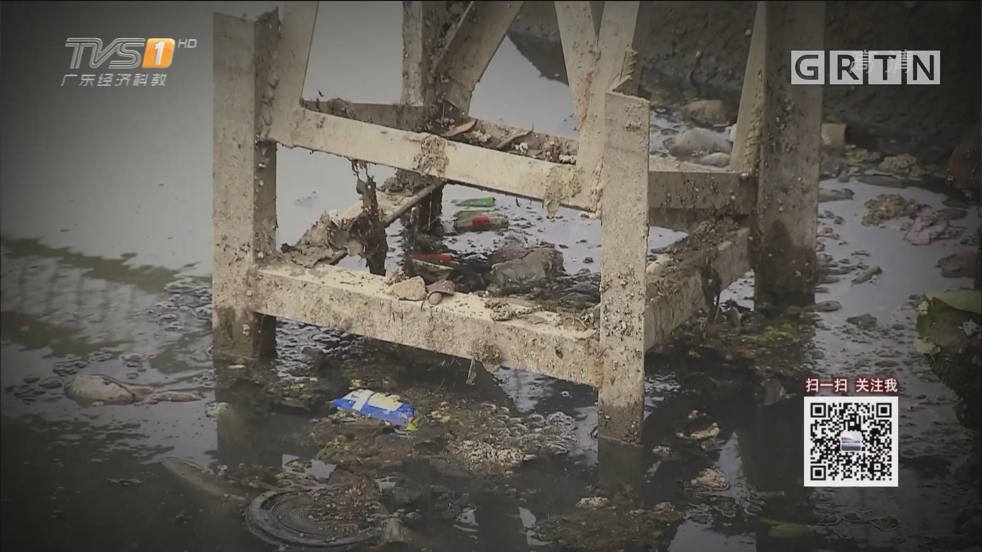 清远:断头河涌成生活垃圾池 臭了足足三年?