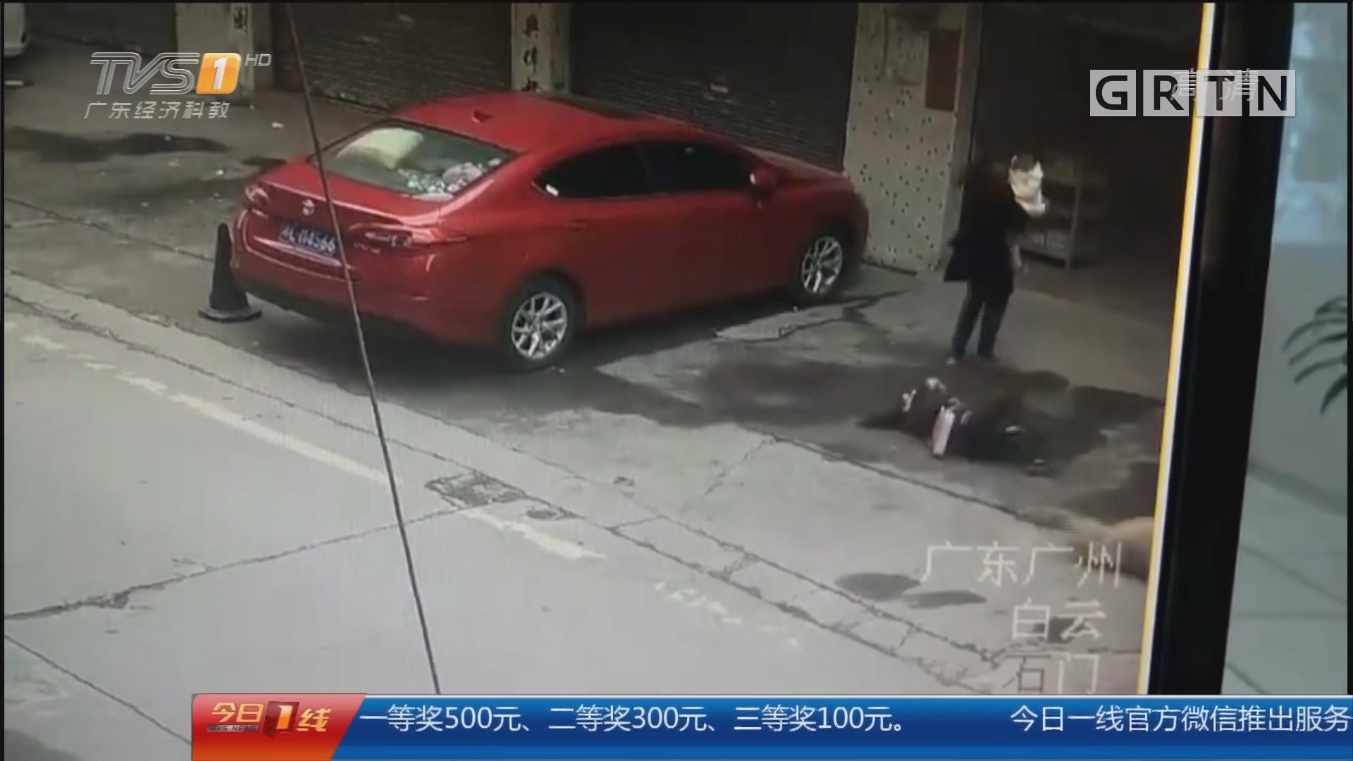 广州:飞来横祸! 狗从天降砸中过路女子