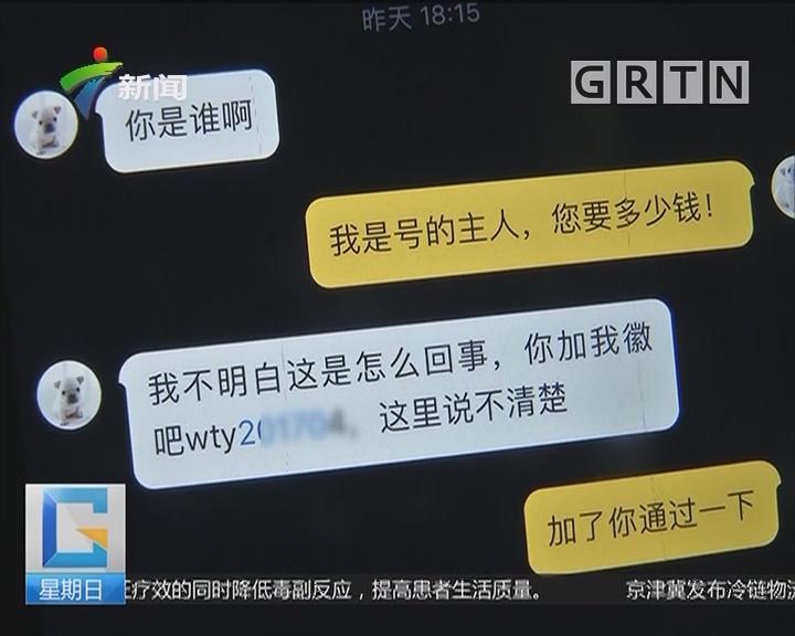 """西安:抖音""""网红狗""""吸粉11万 不料账号被盗"""