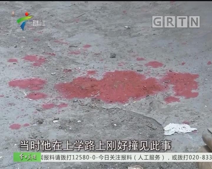 """""""暴力视频""""疯传 竟是熊娃自导自演"""