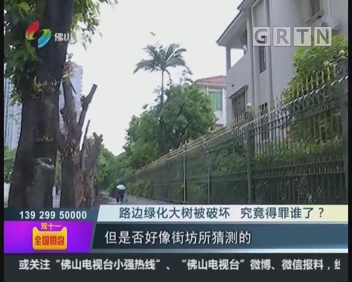 佛山:路边绿化大树被破坏 究竟得罪谁了?