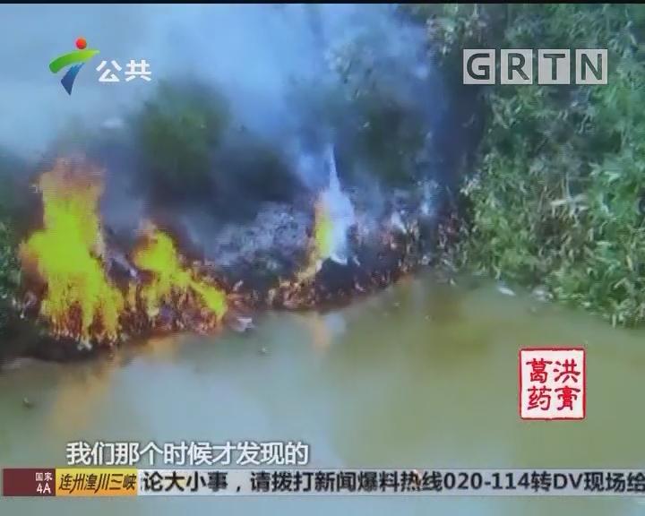 江门新会:农田灌溉河涌突然起火